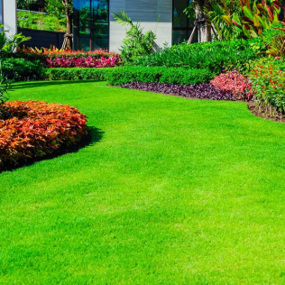 Mowed lawn and landscaping services provided to a home